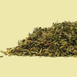 stevia-leaf-mrh