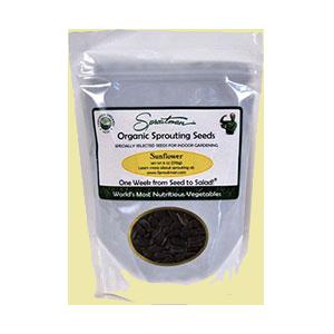 sunflower-seeds-sunfood