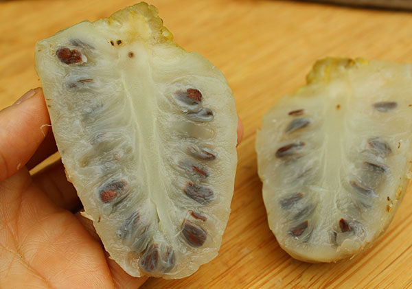 super-fruits-list-noni