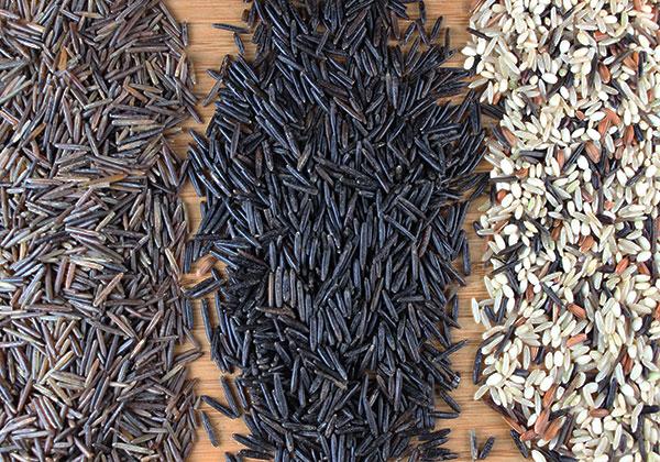 types-of-wild-rice