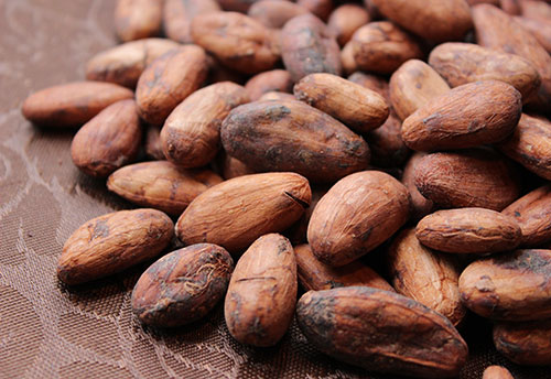 what-is-cacao-benefits