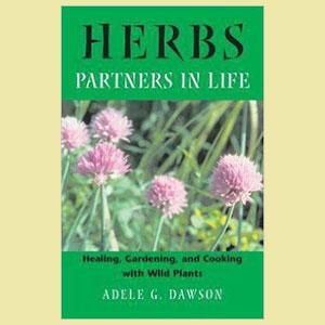 wild-plants-herbs-book-amazon