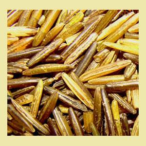 wild-rice-native-bineshii-amazon