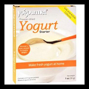 yogurt-starter-yo-gour