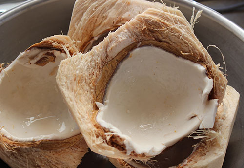 young-coconuts-for-coconut-kefir